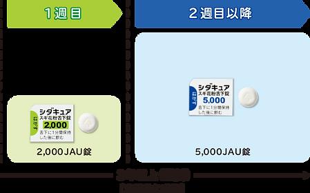 シダキュア.png