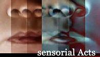 Sensorial_Acts.jpg