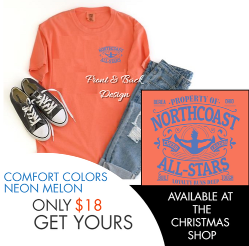 THROWBACK NEON MELON COMFORT COLOR BRAND TEE
