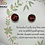 Thumbnail: Clous d'oreille - Roses Rouges