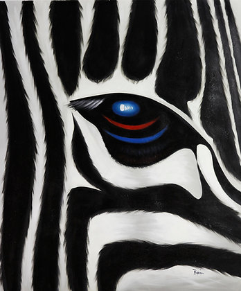 The Eye of the Zebra
