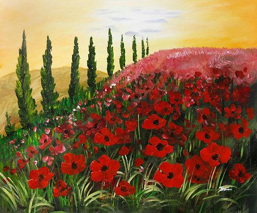 Poppy Fields of Italy