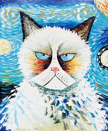 Cate the grumpy Cat