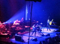 BLUE RODEO 060
