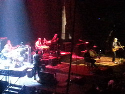 BLUE RODEO 057