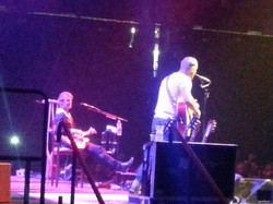 BLUE RODEO 061