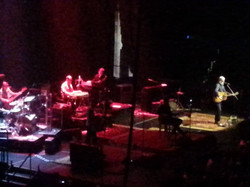 BLUE RODEO 058