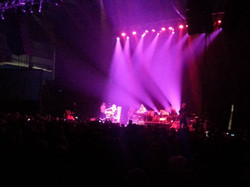 BLUE RODEO 031