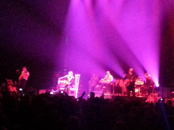 BLUE RODEO 030