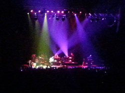 BLUE RODEO 050
