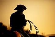 At kovboy