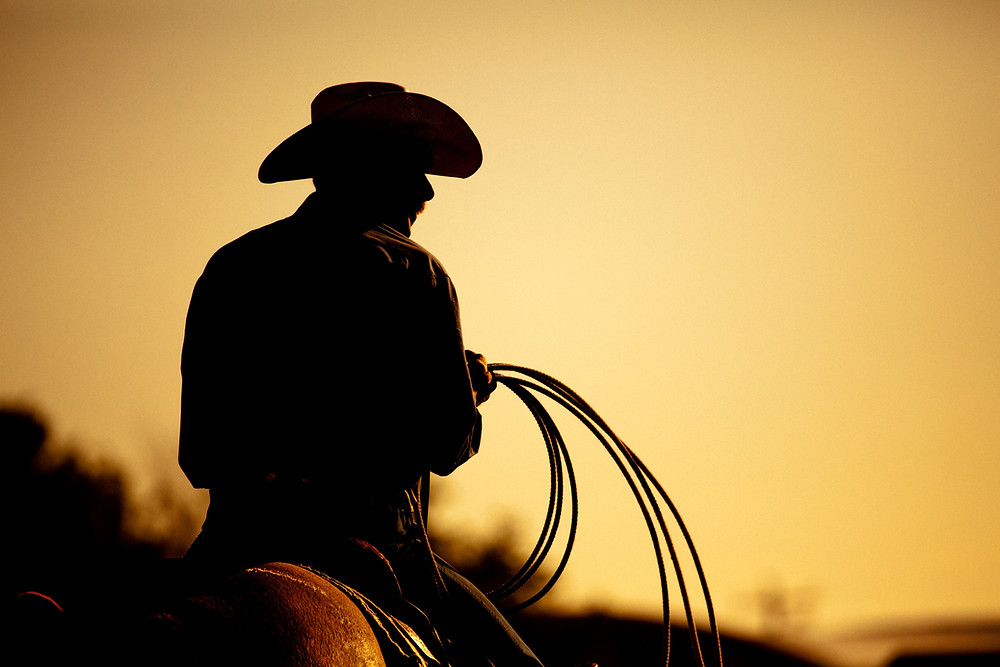sunset silhouetted cowboy with lasso on horse