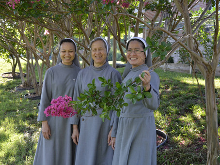 CMR Homes & Gardens: Flower Power