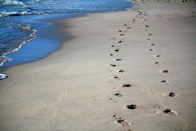 footprints-456732_1920.jpg