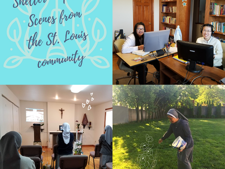 CMR Quarantine Life: St. Louis Community's Experience