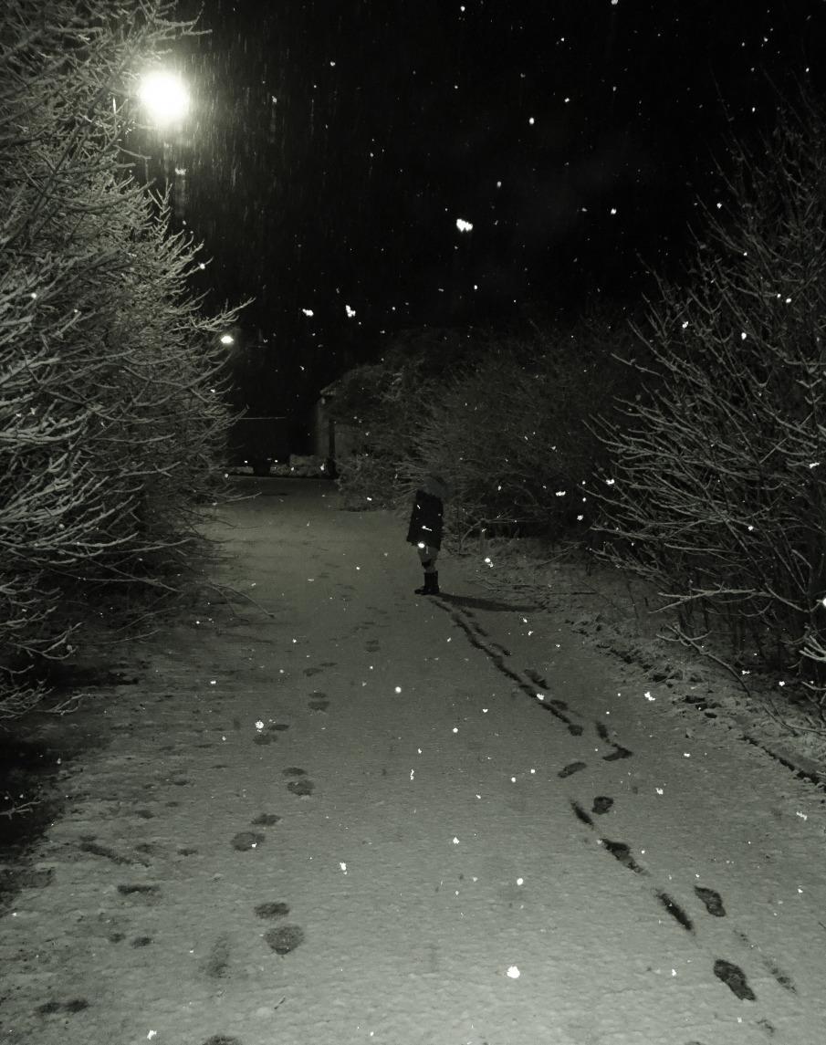 Schneeflöckchen...