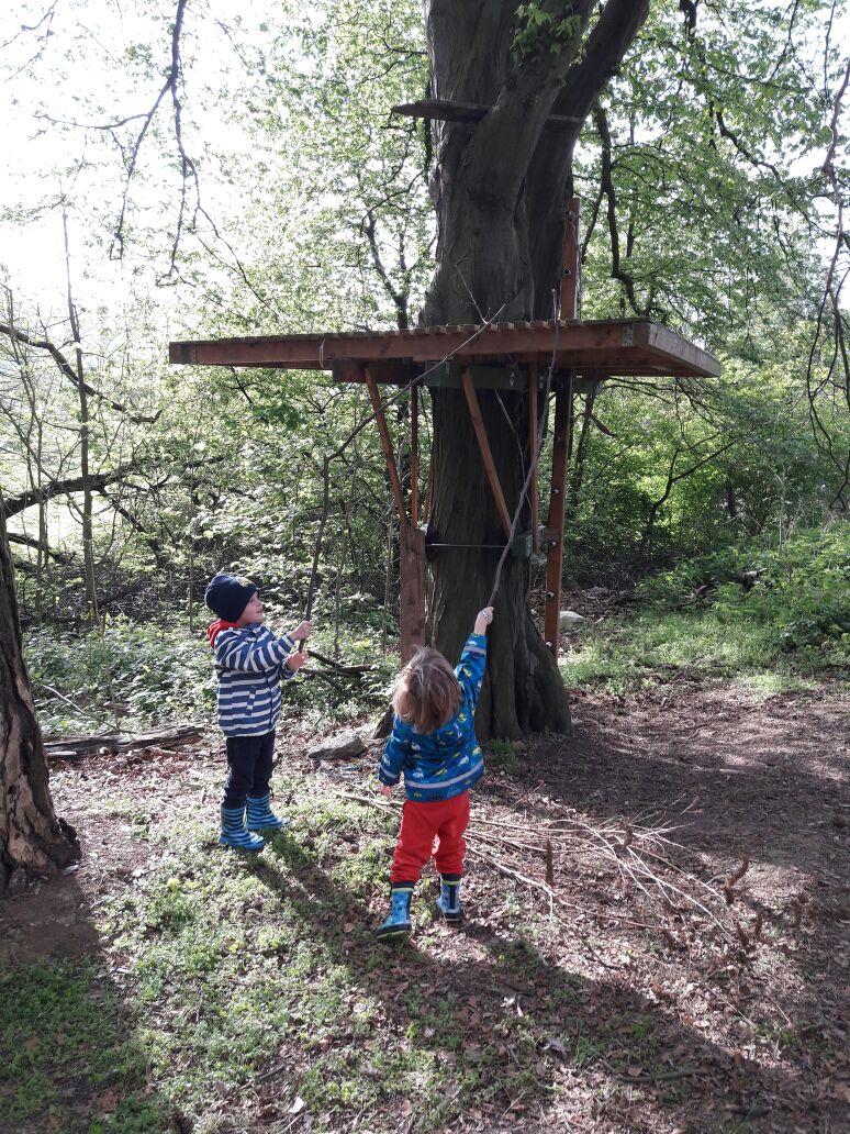 Das magische Baumhaus