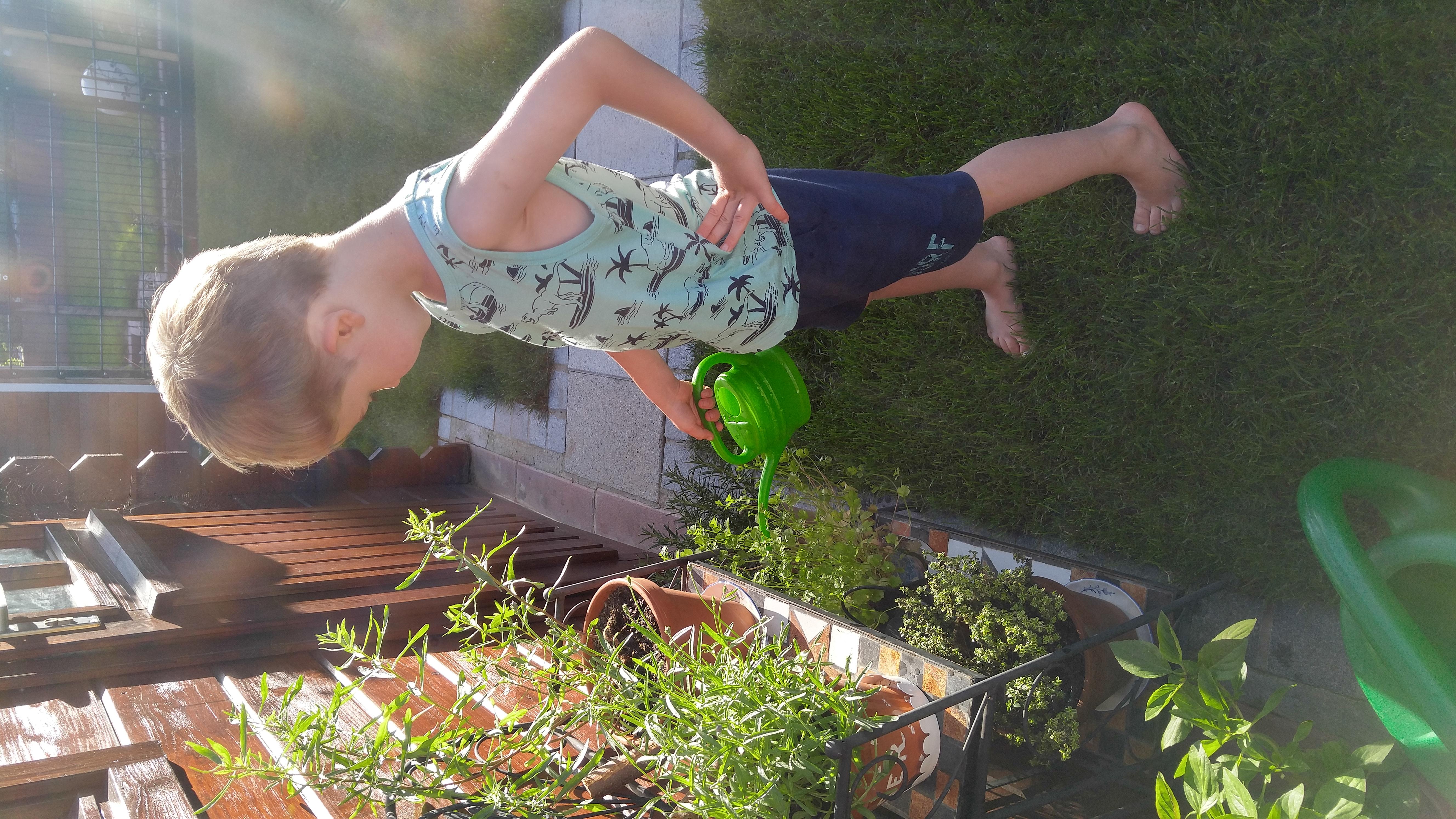 Kleines Gartenglück