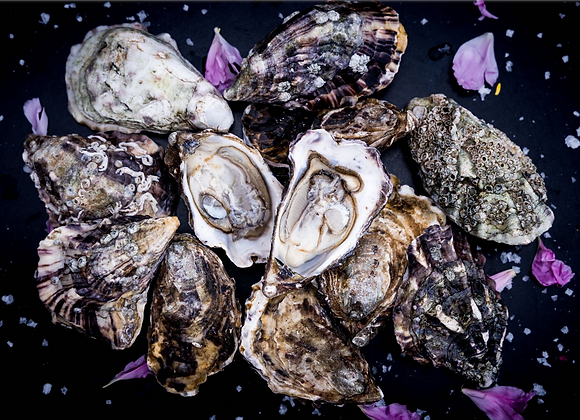 Valentine's Oysters N2 with gift