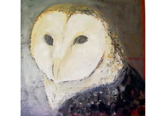 Art & Ecology Unfolding