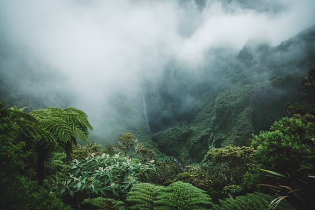 La Reunion island 2019