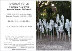 miriam houri-gutholc | foils, 2011