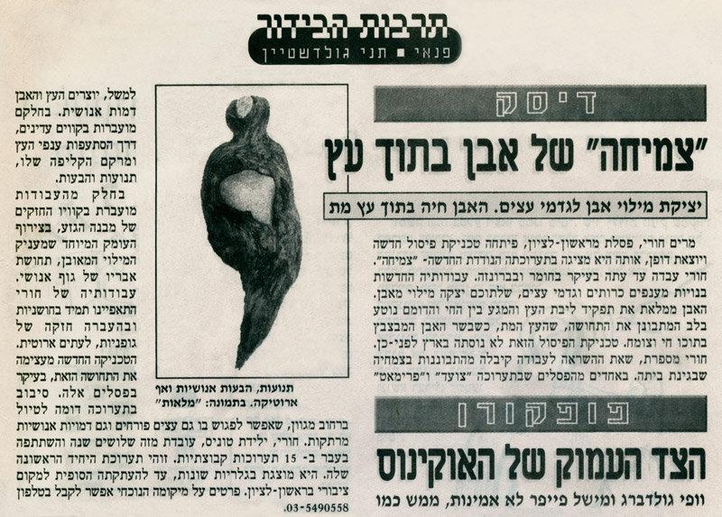 מרים חורי-גוטהולץ | עיתון צהוב