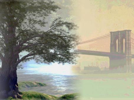 Helper'sin the Early Days at Brooklyn