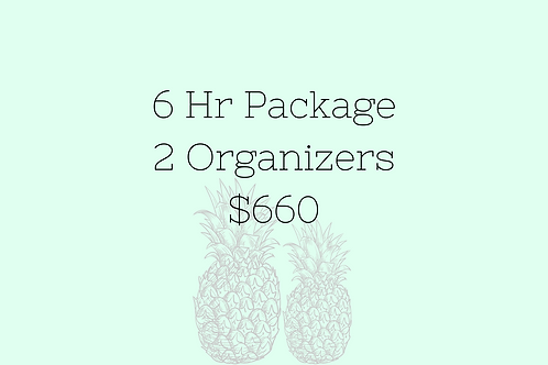 6 Hr Package 2 Organizers