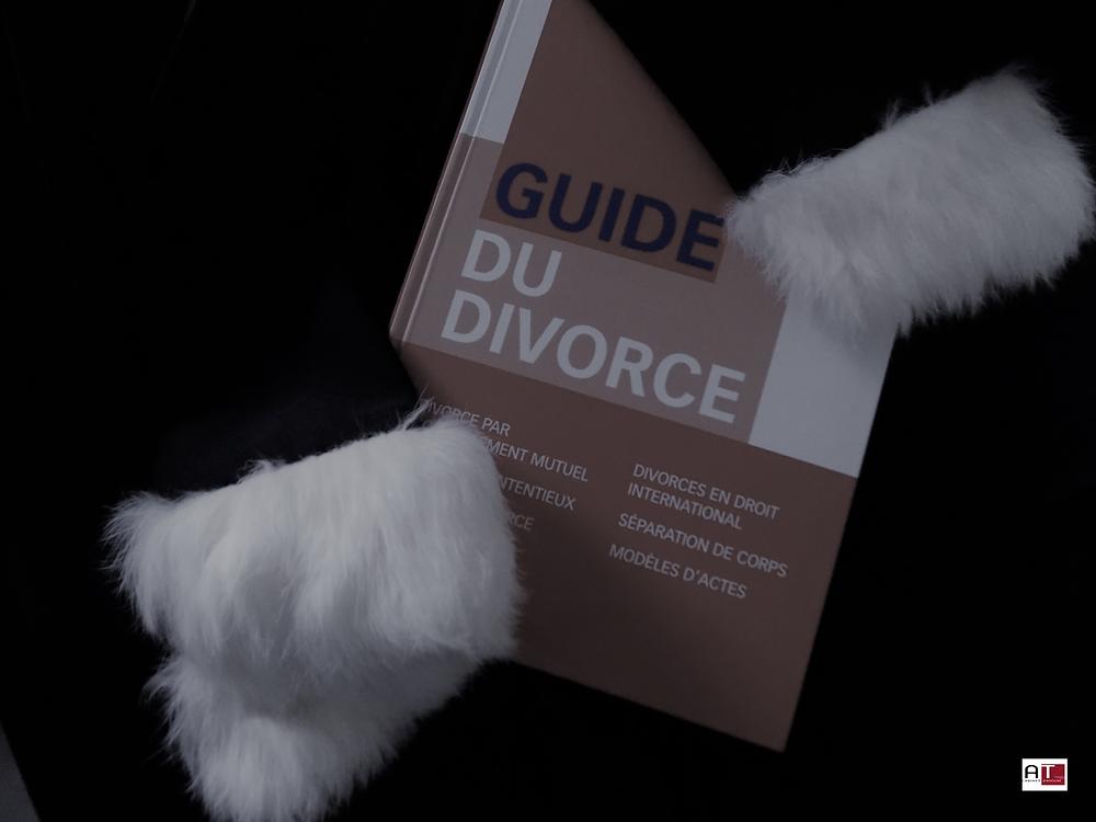 Avocat reims divorce, prestation compensatoire