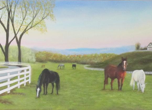 Panoramic Pasture