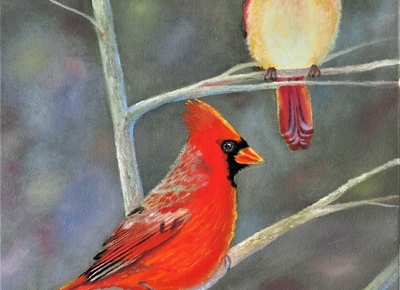 The Beauty of Cardinals