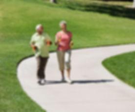 Medowie Physio   Heathy Ageing  