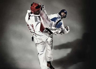 Taekwondo Grand Competition.jpg
