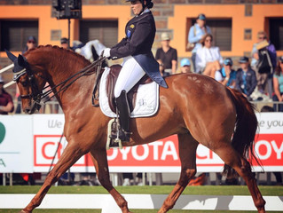 Young Riders Dominate Dressage at Equestrian Grand Final