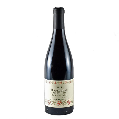 Pinot Noir P. Marchand-Tawse
