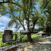tree deck and giant chair