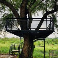 G2G Animal Garden Tree Deck