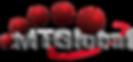 Logo_MTGlobal-01-300x139-1-300x139.png