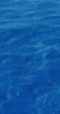 Fotos-del-Mar.jpg