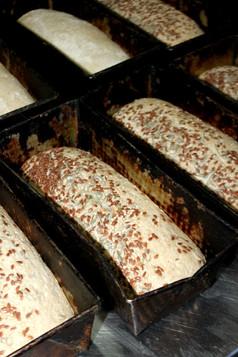 Bread proving.JPG