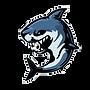 Shark B.png