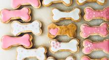 Varför är våra hundkakor hälsosamma för just din pälskling undrar du kanske?