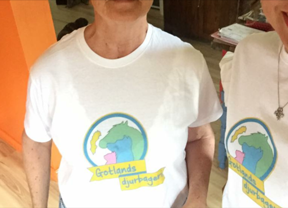 Gotlands djurbageri t-shirt BARN-CHILD