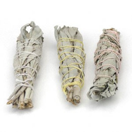 Baby White Sage Smudge Stick