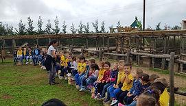 bambini svolgono attività didattica nel paddock