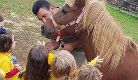bimbi accarezzano il pony
