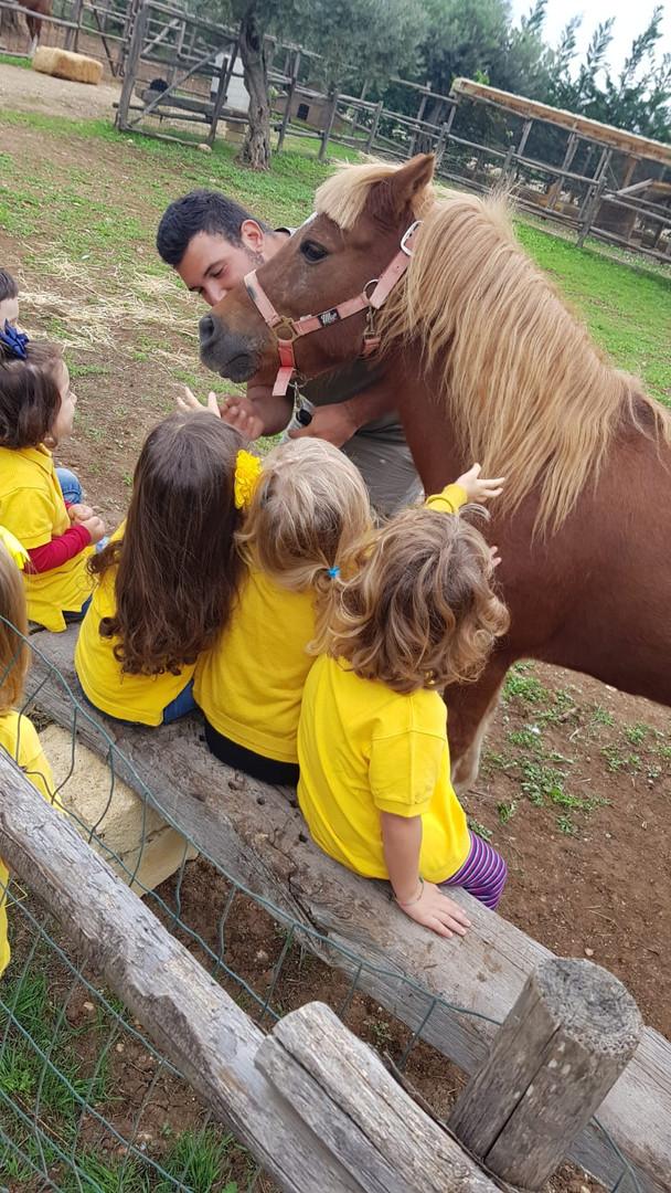 Accarezziamo il Pony