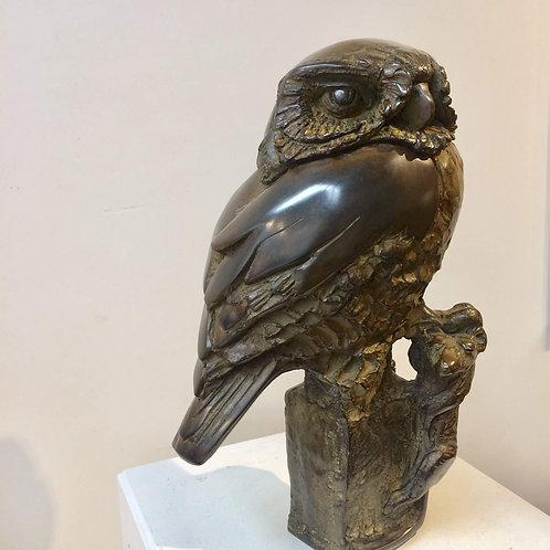 Small owl with prey - Hetty Heyster