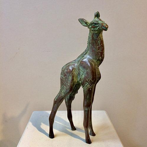 A young standing giraffe - Hetty Heyster